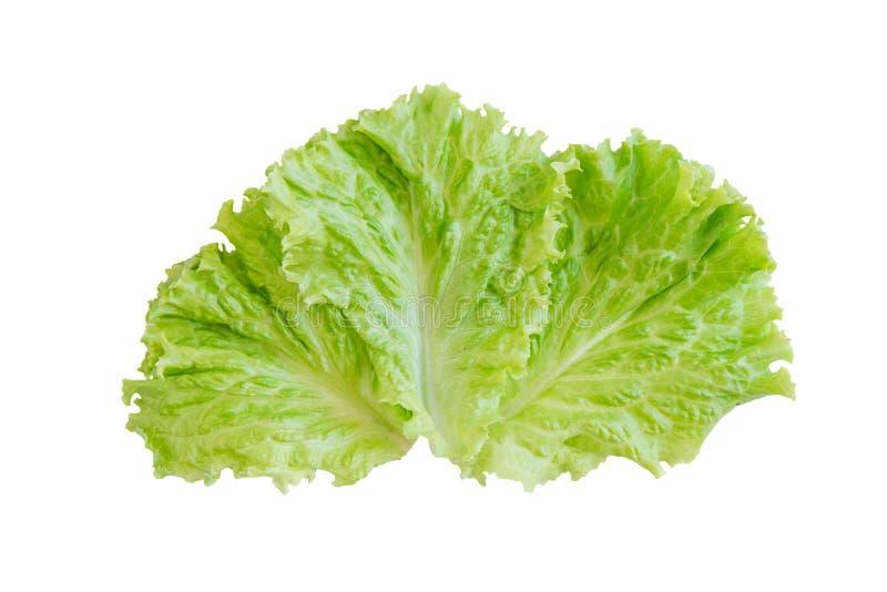 Folha da salada Alface isolada no fundo branco Com trajeto de grampeamento fotografia de stock royalty free