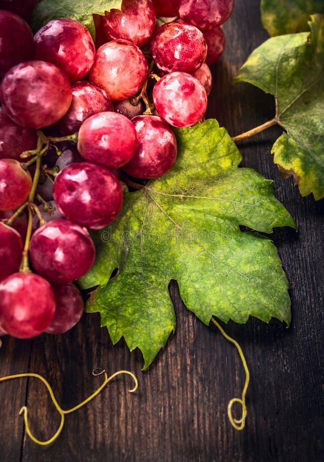 Folha da uva na tabela de madeira escura imagem de stock