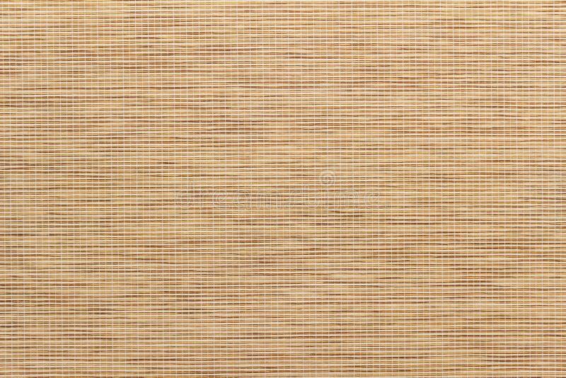 Folha de bambu fotografia de stock
