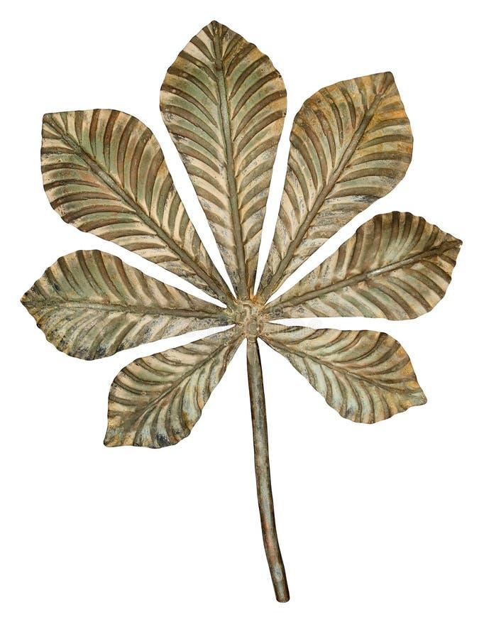 Folha de bronze da castanha. imagem de stock
