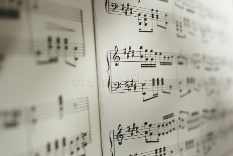 Folha de notas musicais fotografia de stock royalty free