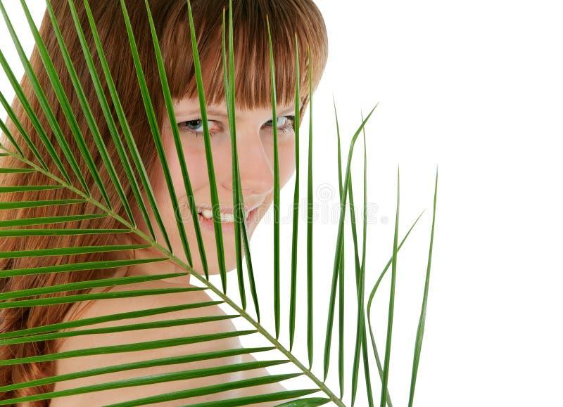 Folha de palmeira de trás consideravelmente fêmea sobre o branco fotografia de stock