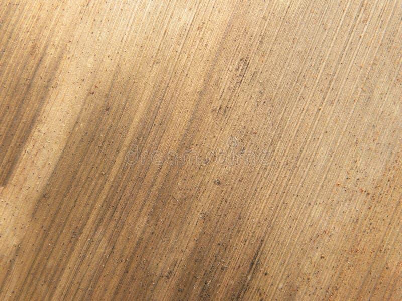 Folha de palmeira seca da areca imagens de stock