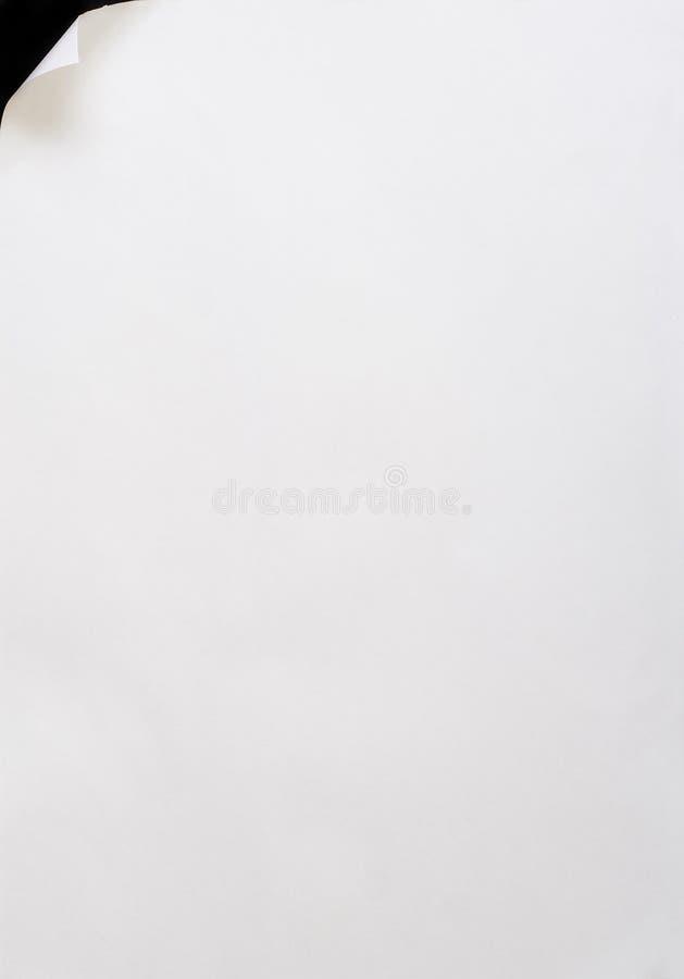 Folha de papel acima ondulada. fotografia de stock