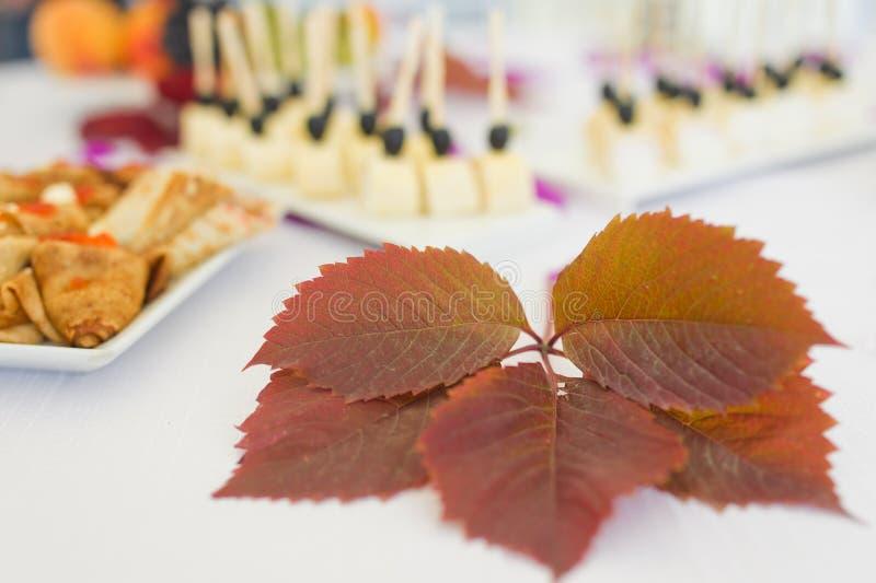 Folha de plátano vermelha do outono fotografia de stock