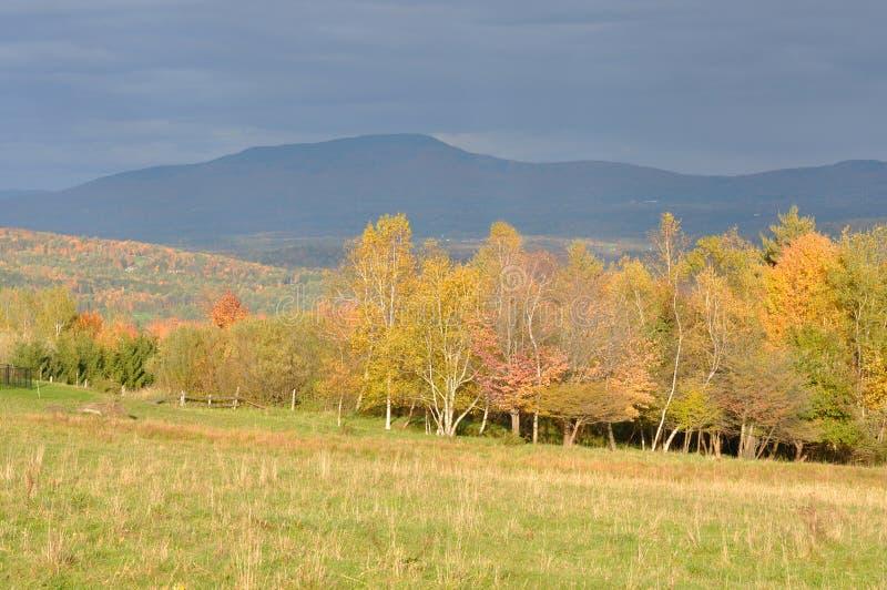 Folha de queda de Vermont, montagem Mansfield, Vermont fotos de stock