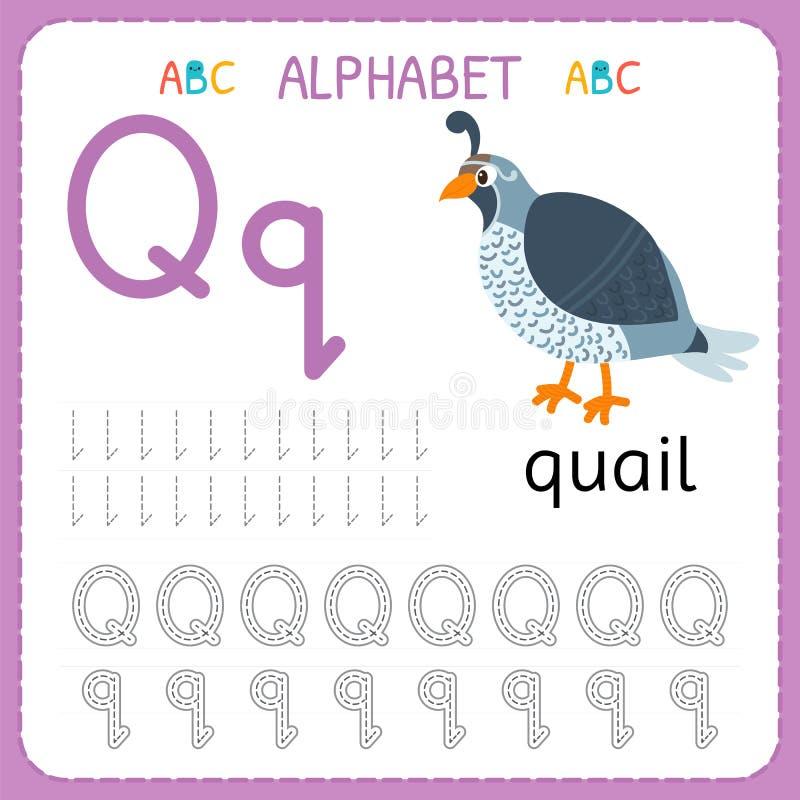 Folha de seguimento do alfabeto para o pré-escolar e o jardim de infância Letra Q da prática da escrita Exercícios para crianças ilustração royalty free