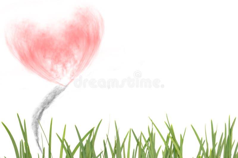 Folha do alho com coração fumo-dado forma, fundo abstrato fotos de stock royalty free