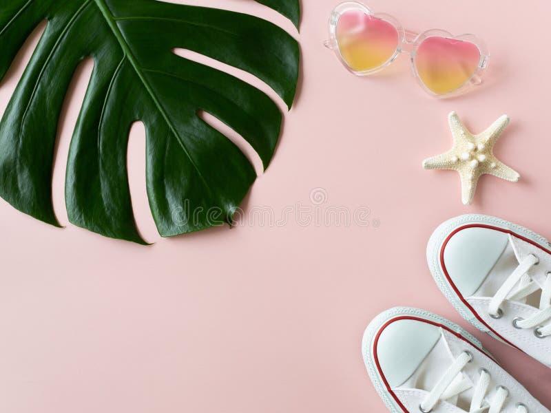 Folha do monstera, óculos de sol e estrela de mar tropicais no fundo cor-de-rosa foto de stock