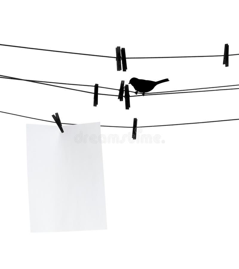 Folha do papel em branco no clothesline imagens de stock royalty free