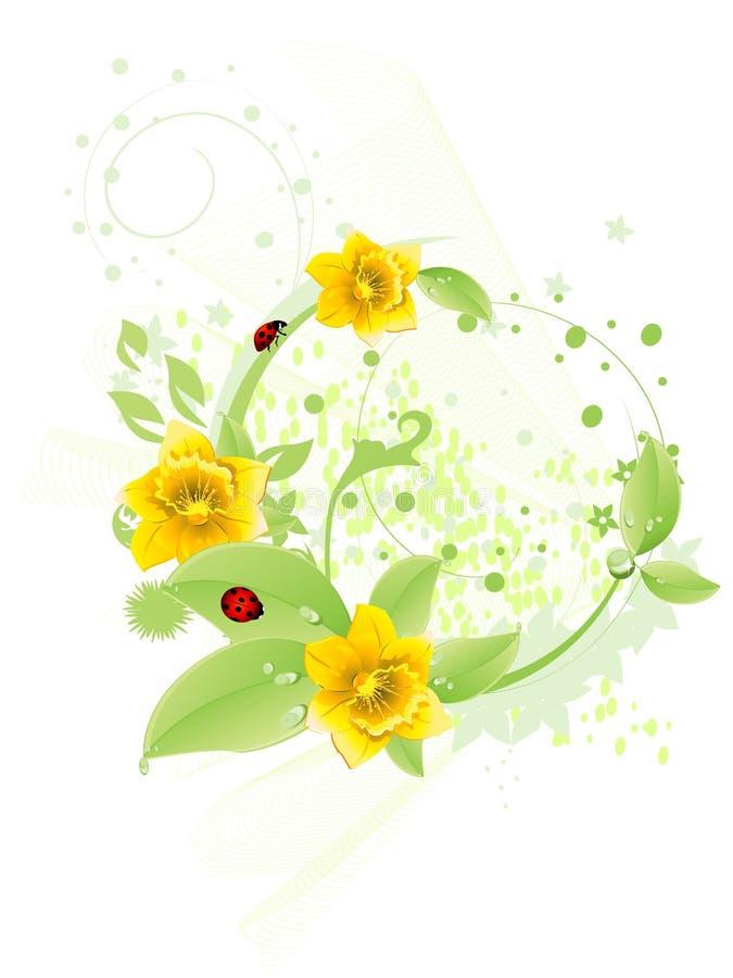 Folha e daffodil verdes ilustração do vetor