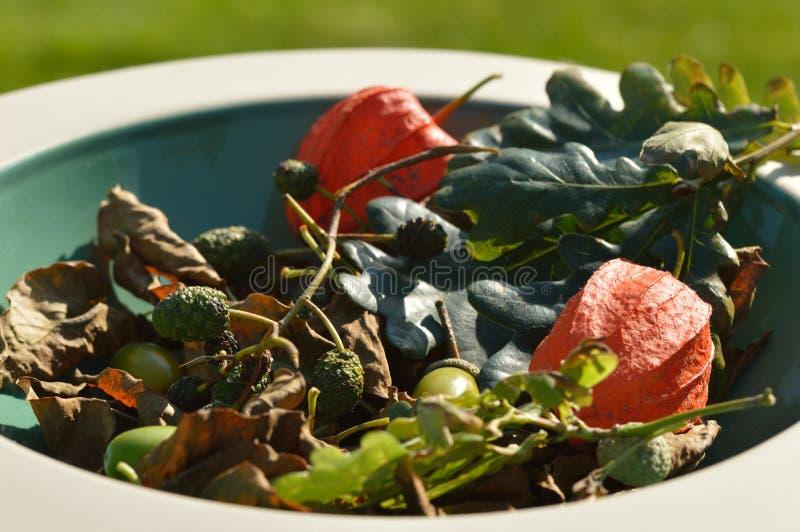 Folha e frutos do outono na bacia foto de stock royalty free