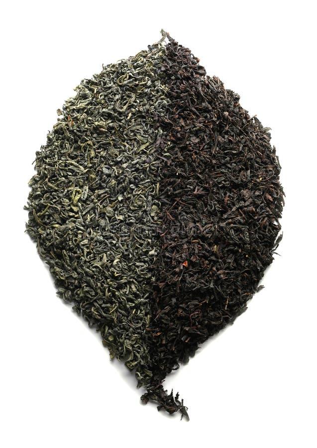 Folha feita do chá seco verde e preto no fundo branco imagens de stock