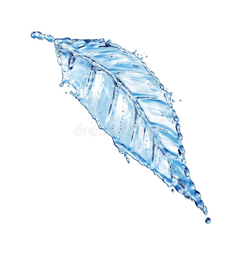 Folha feita do respingo da água ilustração stock