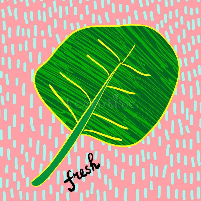 A folha fresca da salada para a ilustra??o tirada m?o da dieta do vegetariano textured ilustração royalty free