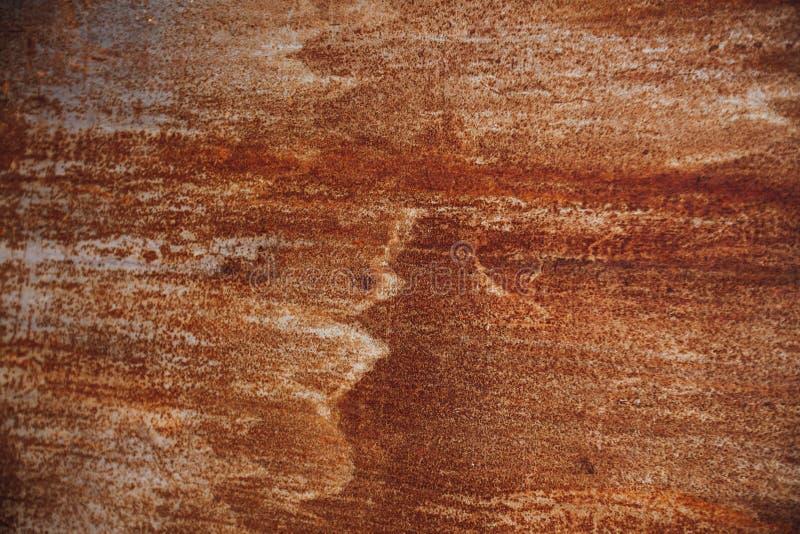 Folha oxidada do ferro foto de stock royalty free