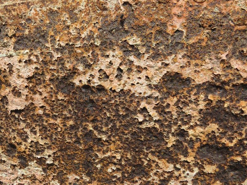 Folha oxidada Textura com invasão de partes da oxidação foto de stock royalty free