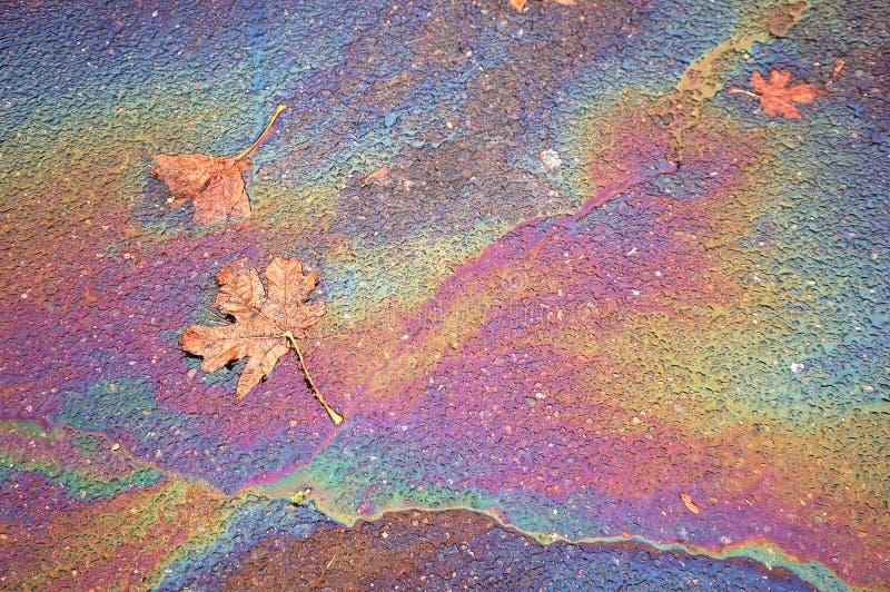 Folha, petróleo e água imagens de stock