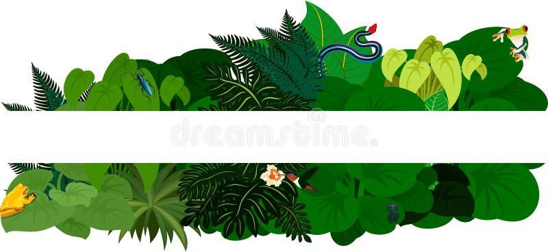 Folha tropical da selva Fundo do design floral - ilustração do vetor ilustração stock