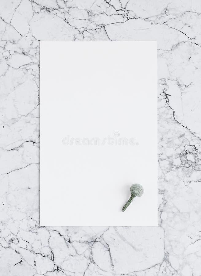 Folha vazia do Livro Branco no mármore com flor do brunia Modelo imagens de stock royalty free