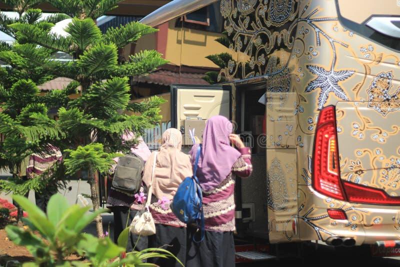 Folha verde do batik das fotos do ônibus imagem de stock