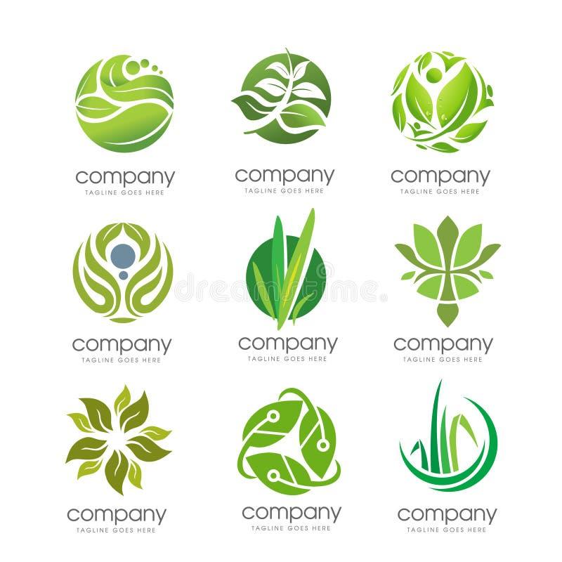 Folha verde e elemento incorporado do grupo do negócio natural ilustração stock