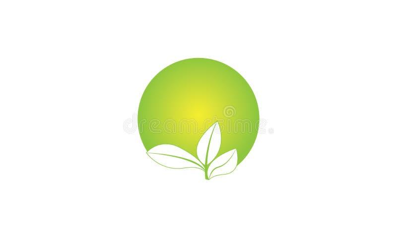 Folha verde Logo Template da ecologia - cuidados m?dicos naturais do alimento biol?gico fresco verde do Logotype de Eco da sa?de ilustração royalty free