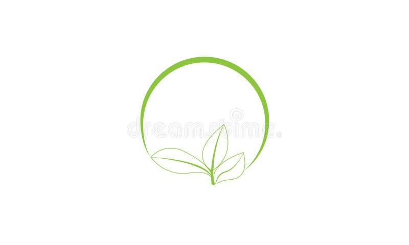 Folha verde Logo Template da ecologia - cuidados m?dicos naturais do alimento biol?gico fresco verde do Logotype de Eco da sa?de ilustração stock