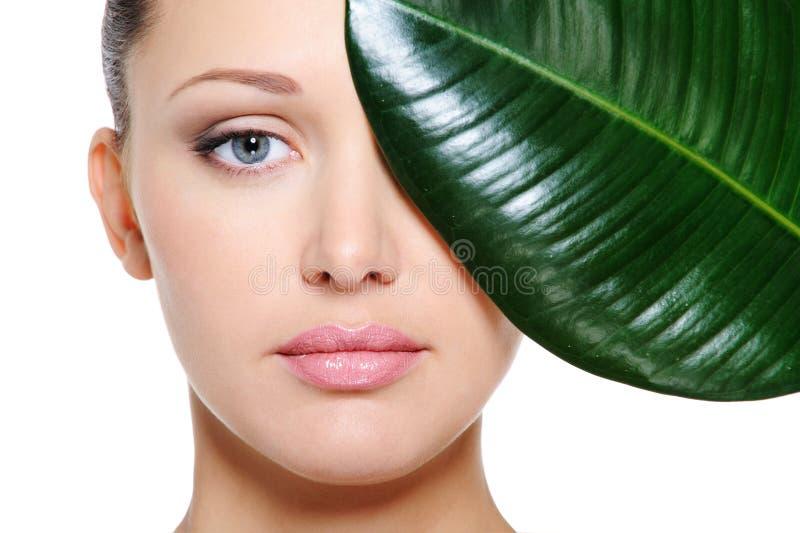 Folha verde que protege uma face fêmea bonita imagem de stock royalty free
