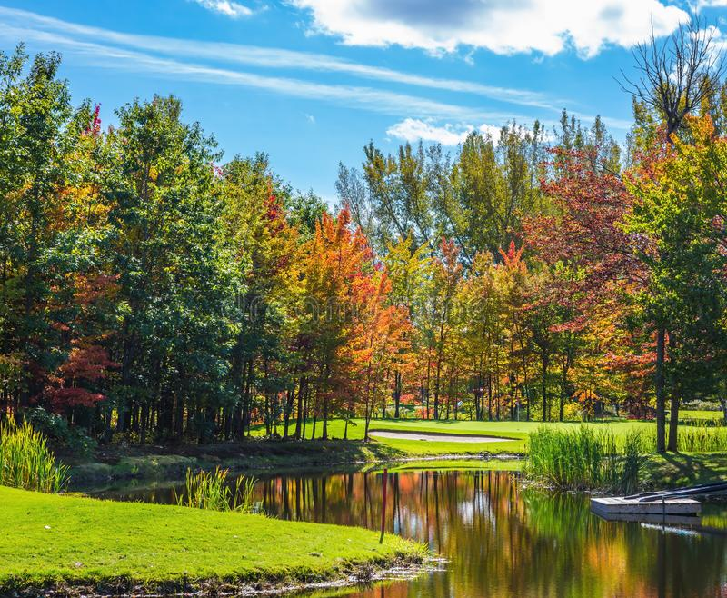 Folha vermelha, alaranjada e amarela do outono imagens de stock
