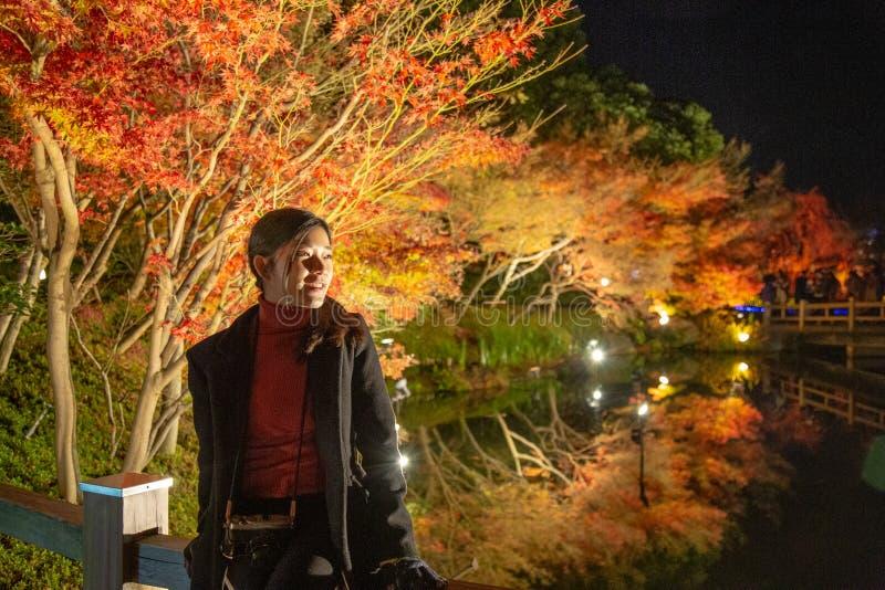 Folha vibrante do outono do bordo em Nabana nenhum parque de Sato, Japão imagens de stock royalty free