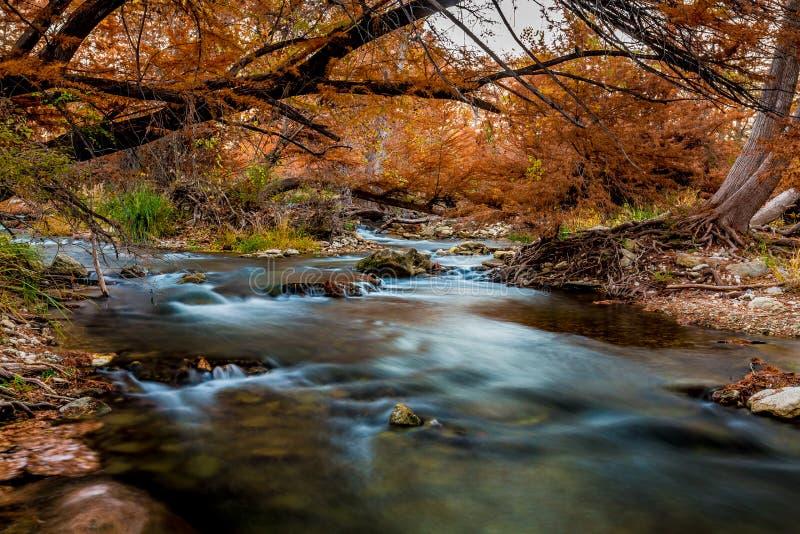 Folhagem de outono bonita em Guadalupe River de seda, Texas imagens de stock