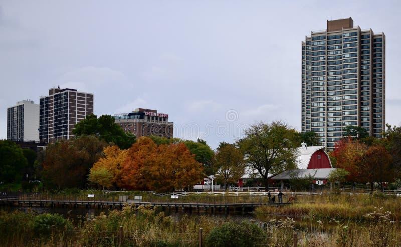 Folhagem de outono e a exploração agrícola urbana foto de stock royalty free