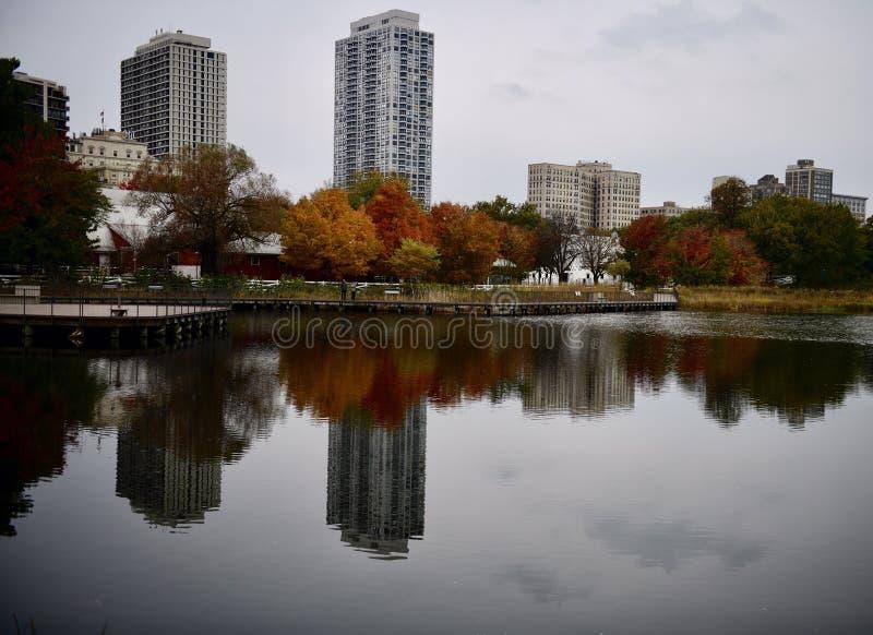 Folhagem de outono e reflexão no zpond sul foto de stock