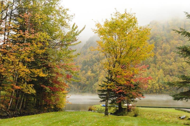 Folhagem de outono no lago Gloriette fotografia de stock royalty free