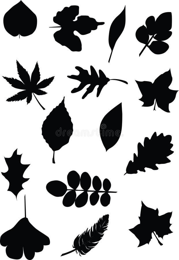 Folhas ilustração stock