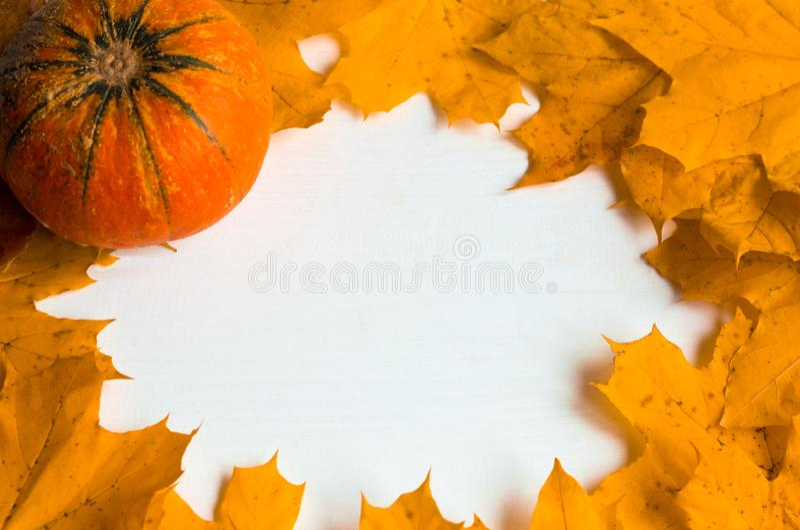 Folhas amarelas de outono e abóbora sobre fundo branco de madeira, com espaço para cópia fotos de stock