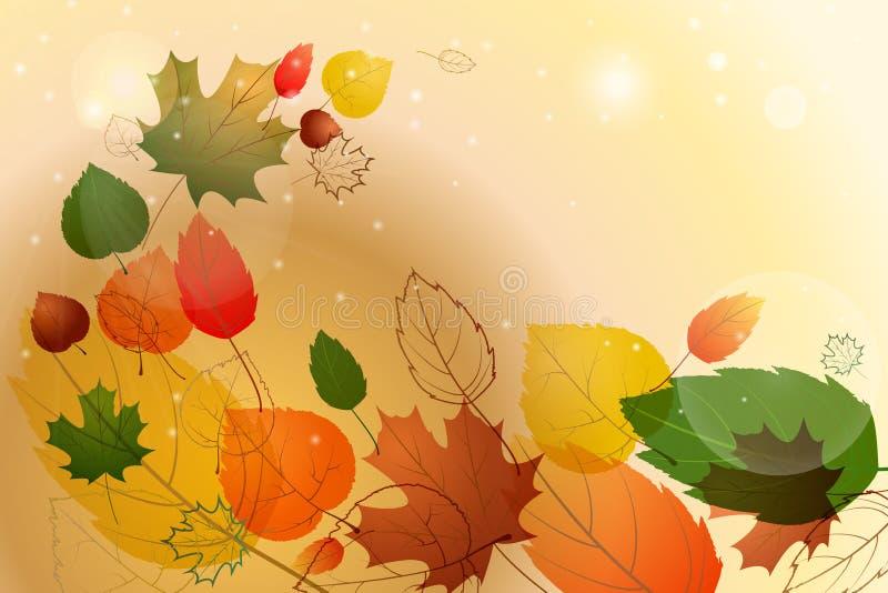 Folhas coloridas com texto da amostra Fundo floral do outono ilustração royalty free