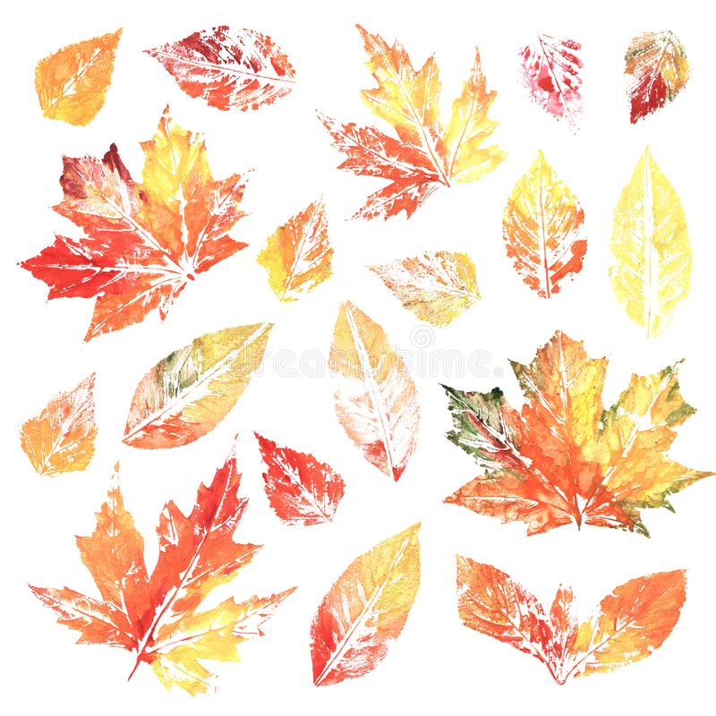 Folhas coloridas da impressão de tinta da aquarela ilustração stock