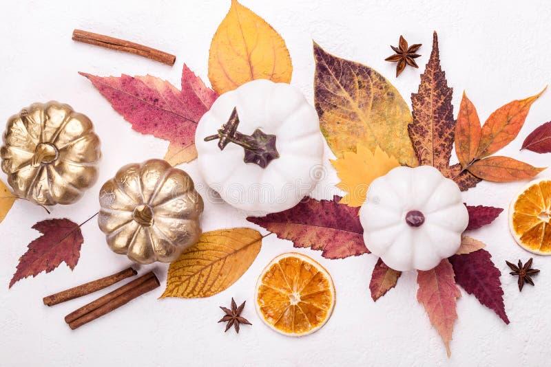 Folhas coloridos e close up branco das abóboras Disposi??o criativa do outono fotos de stock royalty free