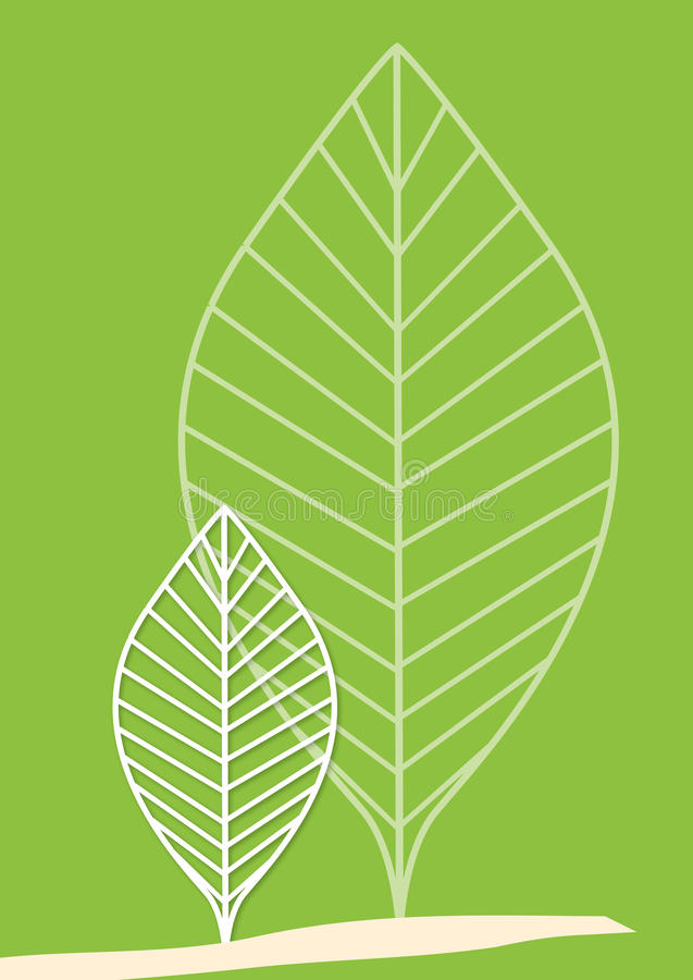 Folhas da árvore ilustração do vetor