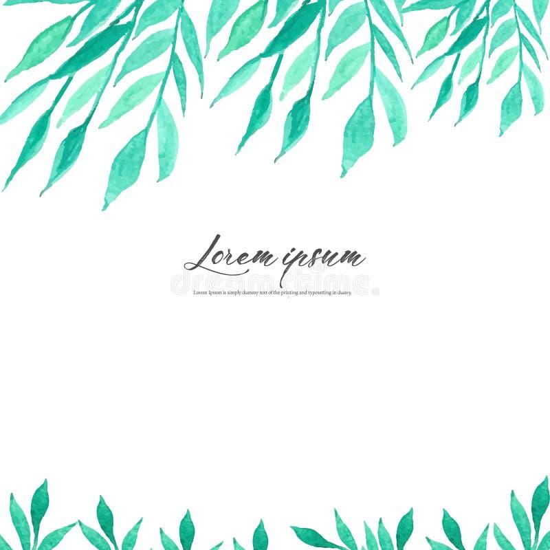 Folhas da aquarela no fundo branco Quadro do vetor de Minimalistic com aquarela das folhas Composição botânica, elemento decorati ilustração royalty free