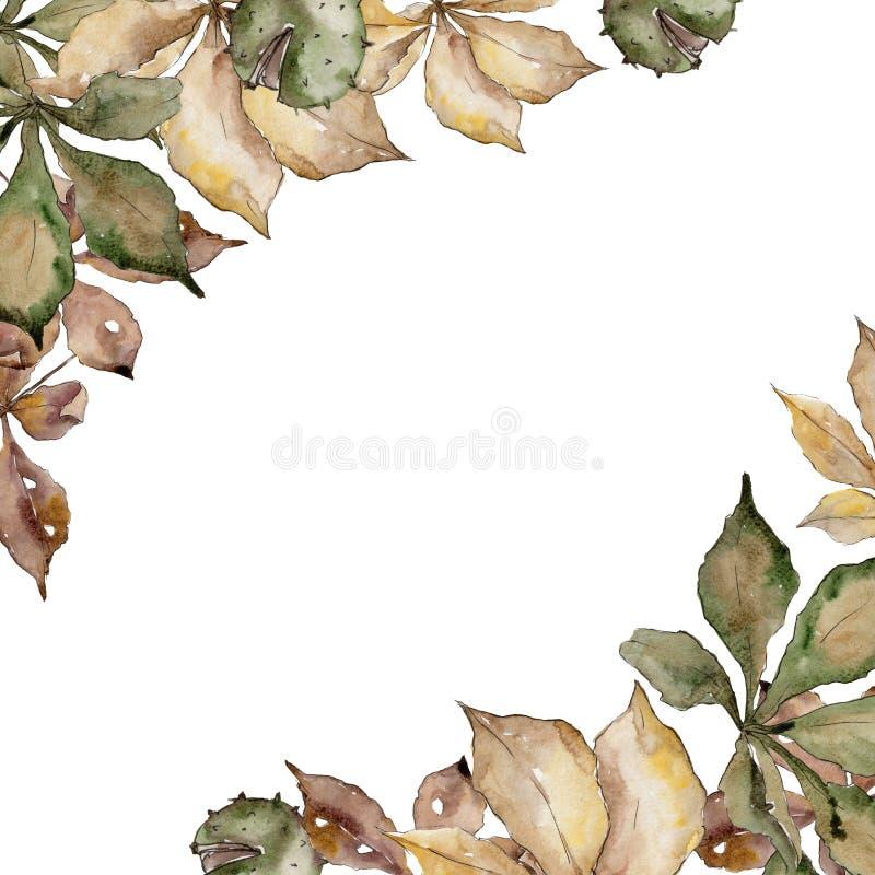 Folhas da castanha do outono Folha floral do jardim botânico da planta da folha Quadrado do ornamento da beira do quadro ilustração stock