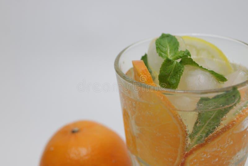 Folhas da laranja, do limão e de hortelã no fundo branco fotografia de stock royalty free