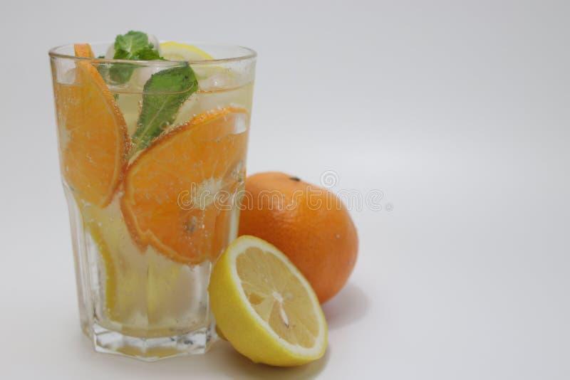 Folhas da laranja, do limão e de hortelã no fundo branco fotos de stock