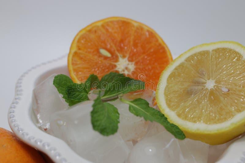 Folhas da laranja, do limão e de hortelã no fundo branco imagens de stock