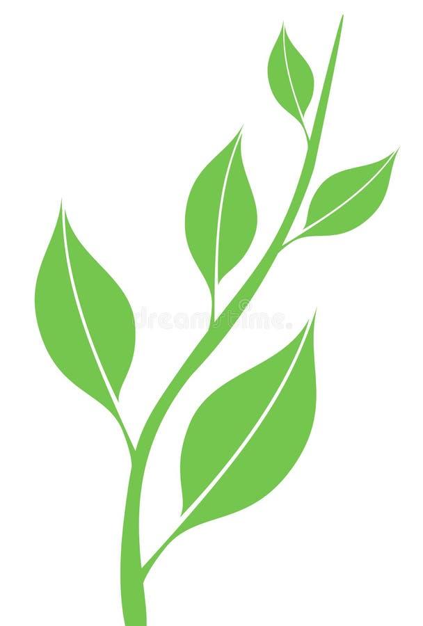 Folhas da mola ilustração royalty free