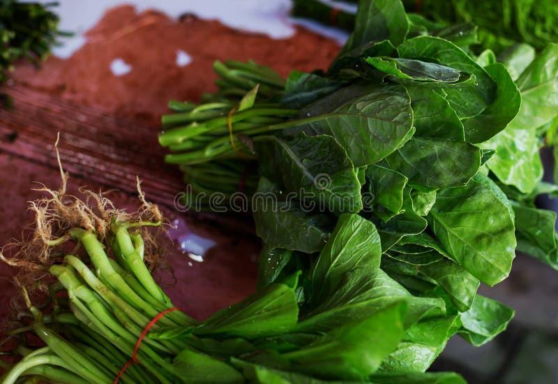 Folhas da mostarda chinesa imagem de stock royalty free