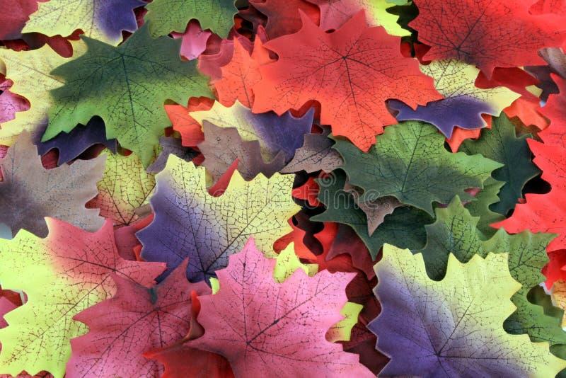 Folhas da queda imagem de stock