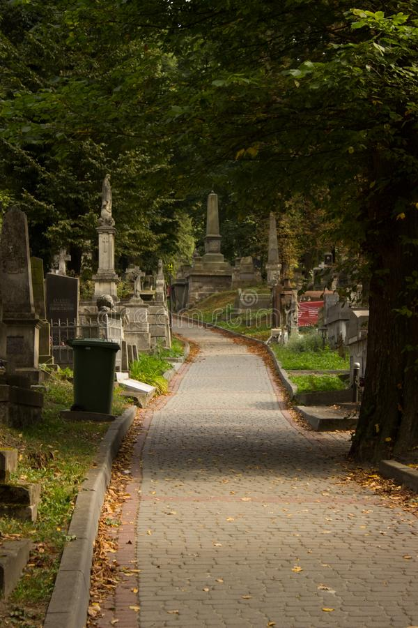 Folhas da rua da estrada do outono do cemitério foto de stock